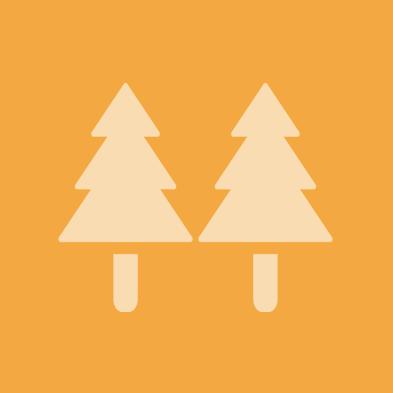 林業の未来